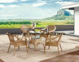 Tabella di alluminio esterna/Patio/HS6080cdt-2/del giardino Rattan&