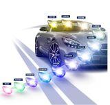 Cnlightの自動車部品H7の自動車ヘッドライトのアクセサリのペアの変換によって隠されるキセノンキット