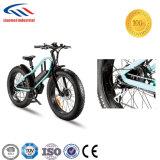 E-Bicicleta nova da forma do pneu gordo