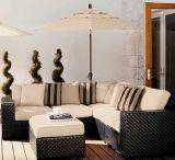 Sofá de mimbre de Sectoinal fijado/muebles del jardín/sofá de la rota fijado/sofá al aire libre de la rota
