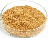 Lattoni del terpene dei flavoni 24% della polvere dell'estratto del foglio di Biloba del Ginkgo di alta qualità 6%