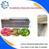 1000kg/H出力鋼鉄ブラシのローラーのカッサバの洗濯機機械