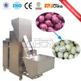 양파 껍질을 벗김 기계 가공 식품 기계