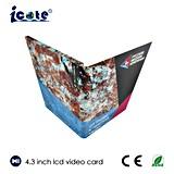 Самая лучшая продавая карточка LCD экрана 4.3 дюймов видео-