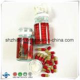 OEM/ODM Extracto de frijol blanco con otros extractos vegetales naturales producto de la pérdida de peso