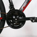 Shimano desconcertante de ligas de alumínio com 21 Velocidade Mountain Bike (Nível de Qualidade Europeia)
