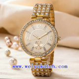 La aduana mira el reloj de las señoras del acero inoxidable (WY-G17004A)