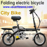 Корабль перевозки электрический и электрический Bike с извлекают батарею