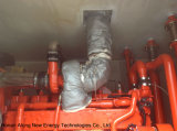 generatore del biogas 300kw