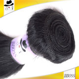 O cabelo remenda a extensão peruana do cabelo humano