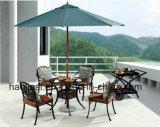 屋外の/Rattan/庭は/テラスの/Hotelの家具の鋳造アルミ椅子及び表セットした(HS 3175C& HS6105DT及び5003RC)