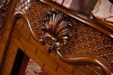 Chauffage de meubles de sculpture et cheminée à la maison d'Elctric d'éclairage