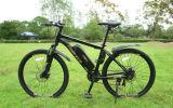 Grosse Verkäufe: 250W 36V MTB Gebirgselektrisches Fahrrad mit Aluminiumrahmen