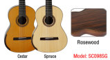 Гитара Aiersi классическая Smallman с круглой задней частью Sc098s