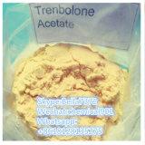 Leistungsfähiges Steroid aufbauendes Puder (Finaplix H/Revalor-H) Trenbolone Azetat