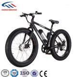 뚱뚱한 E 자전거 48V 모터