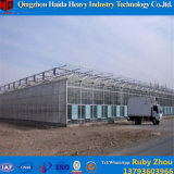 China Factory Supply Venlo Glass Greenhouse with Hydroponic System