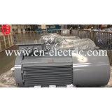 Motore a tre fasi elettrico asincrono di CA del ghisa Y2