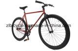 최신 판매 좋은 품질 도시 Fixie 기어 자전거