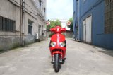 レトロのスクーター、ペダルが付いている直接工場OEMの製造業者1000Wの電気スクーター
