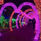 Рождество огни Брисбен свадебные украшения светодиодные индикаторы частоты сердечных сокращений для отдыха