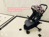 Lightweight Aluminum Frame Bicycle The New Luxury Stroller Baby