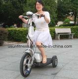 350W 허브 모터 Zappy 전기 세발자전거 3 바퀴 전기 스쿠터