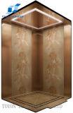 Toyon pequena piscina a elevação do elevador para uso doméstico com barato