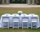 Presidente de la boda al aire libre/Plástico silla boda L-1