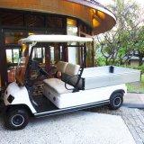 Горячие! ! Электрические поля для гольфа грузовых автомобилей погрузчика
