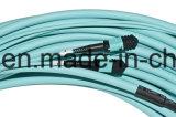 24core cavo di zona ottico della fibra del Aqua Om3 MPO-MPO