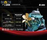 De Motor van het Biogas van de Fabrikant van de motor/de Motor van het Aardgas voor de Reeksen van de Generator