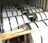 Chapa de acero inoxidable laminado en frío 304 hoja Color