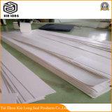 PTFE Platte verwendet für Nahrung, Medizin, Papier, chemische Faser, feine Chemikalien, usw.
