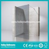 Walk-in Door Ground Glass Porta de chuveiro simples Elclosure (SE716E)
