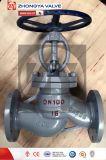 Klep van de Bol van DIN Dn100 C.S&S.S de Industriële