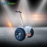 Motocicleta eléctrica de la bicicleta eléctrica eléctrica de la bici de la rueda de Ecorider dos