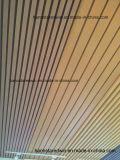 Plastic Bathroom pvc Ceiling Panels voor Walls en Ceiling