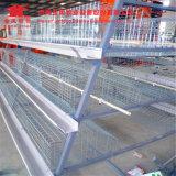 4 Gummireifen ein Typ Huhn-Schicht-Rahmen-automatisches System für Geflügelfarmen