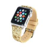 반짝임 별 Apple 시계 줄을%s 가진 숙녀 Apple 시계 결박