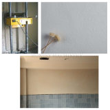 高品質の機械を塗る自動壁
