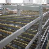 Flujo a través de la gravedad de almacén de estantería rodante