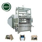 Hghy 서류상 산업 패킹 펄프 조형 쟁반 기계