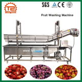 Arruela industrial da máquina de lavar da fruta do preço barato