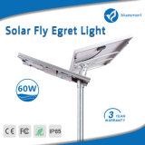 lampe solaire de lumière de jardin de rue de détecteur de mouvement de 60W DEL