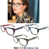 상표가 붙은 Eyewear는 Eyewear 광학적인 디자이너를 짜맞춘다 Eyewear