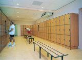 Armario electrónico de la gimnasia del bloqueo HPL del almacenaje moderno de Fumeihua