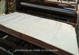 Abedul de las ventas de fabricante 4*8 Okoume//madera contrachapada comercial roja del embalaje del roble/etc