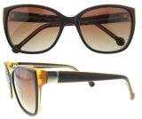 Zonnebril de Van uitstekende kwaliteit van de Zonnebril van de Groothandelaar van China van de Zonnebril van de manier