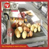 Lavadora del vehículo de la arandela del pepino de la lavadora de la fruta